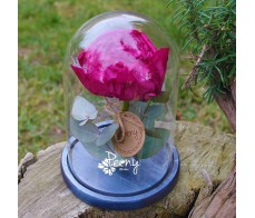 Peony red charm in a flask