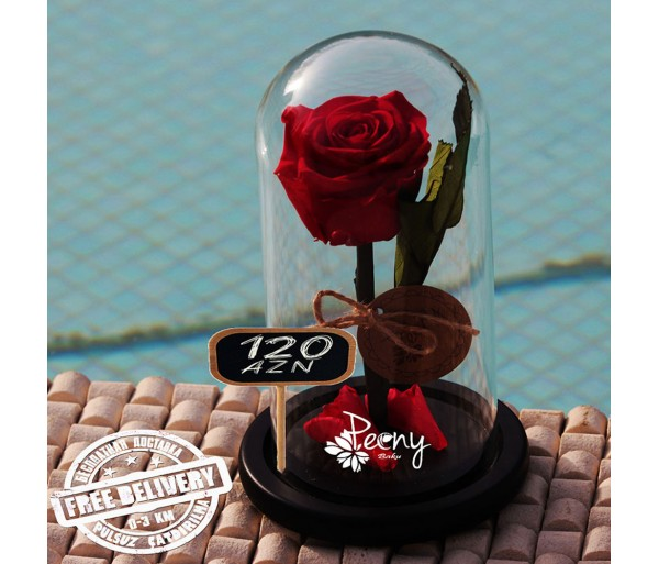 Роза в колбе алая
