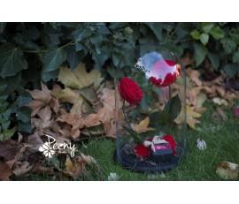 """Forever rose """"Heart"""""""